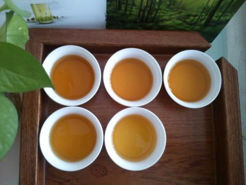 峨眉雪芽 红茶 峨眉雪芽的养生茶如何
