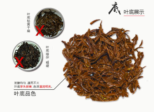 宁红茶叶价格