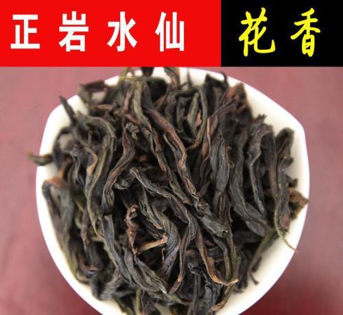 武夷山水仙树种