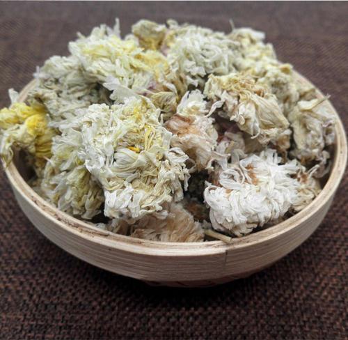 杭白菊是白菊花吗