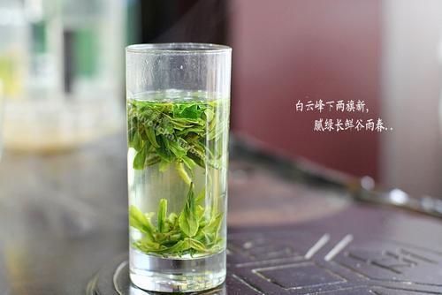 越乡龙井茶图片