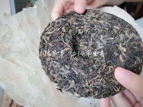 老白茶是普洱茶吗