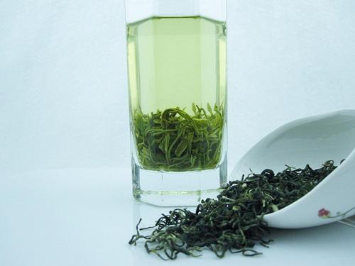 贵州都匀毛尖茶叶品牌