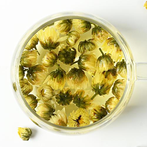 金银花和杭白菊的功效与作用